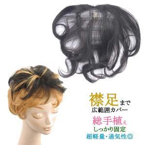 ウィッグ ヘアピース ミセス 部分ウィッグ かつら 送料無料  幅広カバー 総手植え 白髪隠し tk4|wigwigrunes