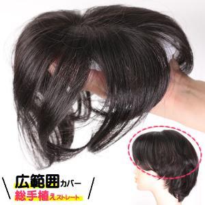 ウィッグ ヘアピース ミセス 部分ウィッグ かつら 送料無料 分け目 前髪 カバー 総手植え tk30|wigwigrunes