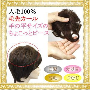 ウィッグ ヘアピース  人毛100% 円形脱毛症 部分ウィッグ かつら 送料無料 つむじ カバー 5009-curl|wigwigrunes