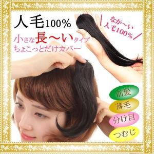 ウィッグ ヘアピース  人毛100% 円形脱毛症 部分ウィッグ かつら 送料無料 メッシュ 脱毛症 kz3|wigwigrunes
