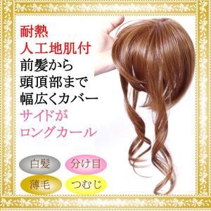 前髪 ウィッグ ヘアピース 耐熱 ストレート 送料無料 かつら 部分ウィッグ ポイントウィッグ つむじカバー 人気 lw09|wigwigrunes