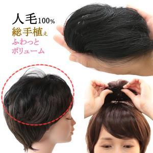 ウィッグ ヘアピース 人毛100% ミセス 部分ウィッグ かつら ちょこっとサイズ tk1017|wigwigrunes