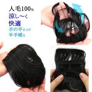 ウィッグ 人毛100% ヘアピース 円形脱毛症 部分ウィッグ かつら ミニ サイズ tk1humanh|wigwigrunes