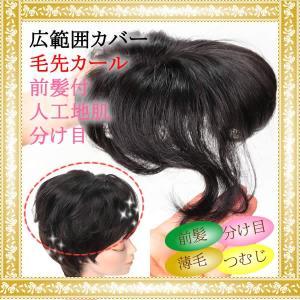 ヘアピース 前髪ウィッグ かつら 部分ウィッグ ポイントウィッグ 増毛 人気 分け目 つむじカバー tk38|wigwigrunes