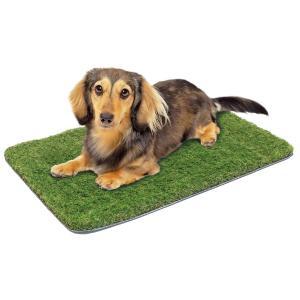 芝生きぶん 犬・猫 対応  ペット 対応 人口芝生マット ドギーマン|wil-mart