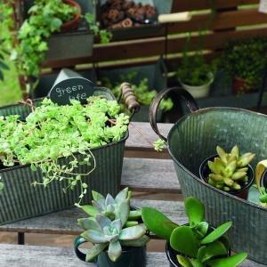 プランター おしゃれ 長方形 アンティーク 植木鉢 プランターボックス ガーデニング インテリア アイアン ジャンク 生活雑貨