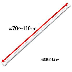 アイリスオーヤマ 突っ張り棒 伸縮棒 超スリム 幅70~110cm ホワイト RSV-110
