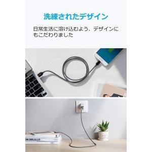 2本セットAnker PowerLine+ USB-C & USB-A 2.0 ケーブル (0.9m...