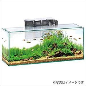 ジェックス 水槽 グラステリア スリム600 6点セット GTS600|willy-willy-zakka