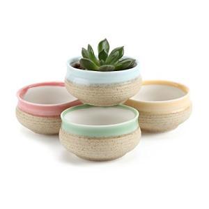 T4U 7CM 陶器鉢 シュガーシリーズ 多肉植物 サボテン鉢 フラワーポット プランター容器 緑 4個いり|willy-willy-zakka