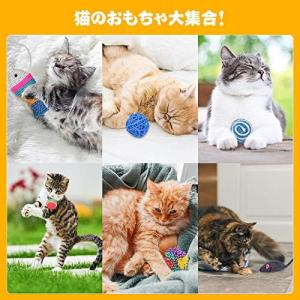 猫おもちゃ ネズミおもちゃ 21個入り トンネルおもちゃ Ninonly 運動不足 ストレス解消 キャットおもちゃ 子猫 成猫 ペットおもちゃ 音が鳴|willy-willy-zakka