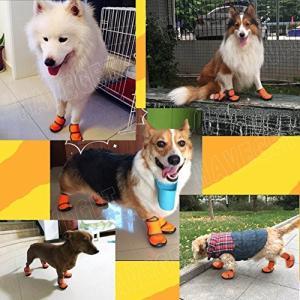 HaveGet 犬靴 ドッグブーツ 犬用靴 愛犬のお散歩 滑り止め 雨の日 柔らか 軽い 小型犬 中型犬 大型犬 7サイズ選べる ドッグシューズ XX|willy-willy-zakka