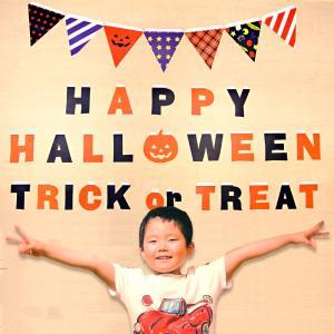 Halloween ハロウィンパーティはおまかせ ハロウィン ペーパーフラッグセット メール便送料無料 windpal
