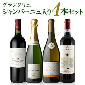 <セット内容>  世界中を飛び回って探してきたワインの中で、めったにお目にかかれないとっておきのワイ...