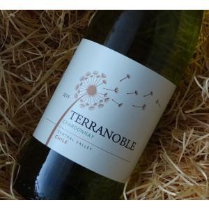 テラノブレ シャルドネ 750ml (白ワイン)|wine-tikyuya
