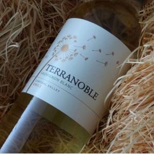 テラノブレ ソーヴィニヨン・ブラン 750ml (白ワイン)|wine-tikyuya