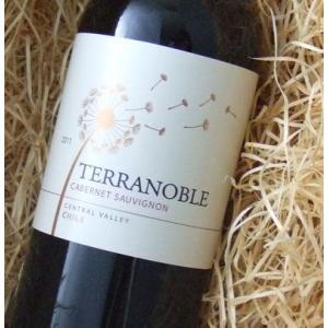 テラノブレ  カベルネ ソーヴィニヨン 750ml (スクリューキャップ)(赤ワイン)|wine-tikyuya
