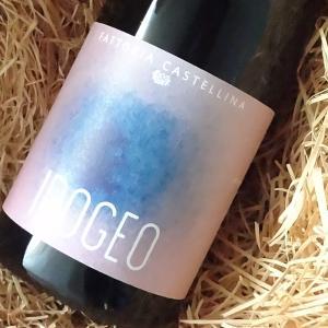 カステッリーナ イポジェオ IGT 2016 ファビオ・モントモーリ 750ml(赤ワイン)|wine-tikyuya