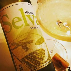 セルヴァ・ビアンコ 2015 イタリア・マルケ州辛口白ワイン