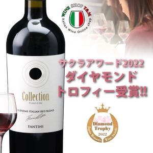 フルボディ 赤ワイン ファンティーニ コレクション ヴィノ ...