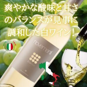 ノヴェメンティ・ビアンコ 2015 イタリア プーリア州 辛口白ワイン