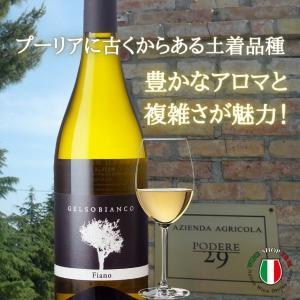 ジェルソ ビアンコ 2015 イタリア プーリア州 辛口 白ワイン