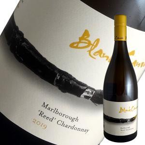 リード シャルドネ 2019年 ブランク キャンバス(白ワイン ニュージーランド)|winecellarescargot
