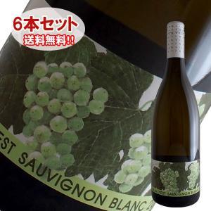 (送料無料)6本セット ソーヴィニヨン ブラン 2016年 ヴィラデスト(白ワイン 日本)|winecellarescargot
