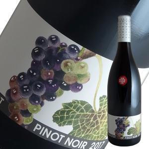 ピノ ノワール 2016年 ヴィラデスト(赤ワイン 日本)|winecellarescargot