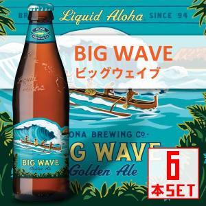 コナビール ビッグウェーブ ゴールデンエール 瓶355mlx6本 ハワイアンビール 輸入ビール|winecellarescargot