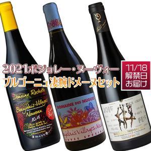 ボジョレーヌーヴォー2019 (送料無料)ボジョレーヌーヴォー2019ブルゴーニュ凄腕ドメーヌ3本セット (赤ワイン ブルゴーニュ)(解禁日11月21日お届け)|winecellarescargot
