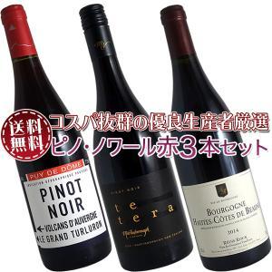 (送料無料)ブルゴーニュ赤ワイン3本セット(A) コスパ抜群の優良生産者を厳選|winecellarescargot