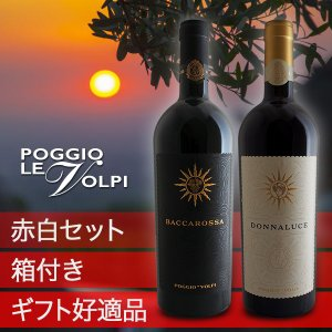 イタリアワイン紅白セット(ポッジョ レ ヴォルピ)(ギフトボックス)|winecellarescargot