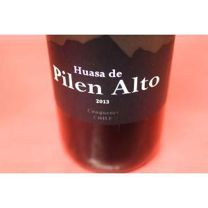赤ワイン アグリコーラ・リュイット・リミタダ / ウアサ・デ・ピレン・アルト・ピレン・アルト・マウレ・ヴァレー [2013] wineholic