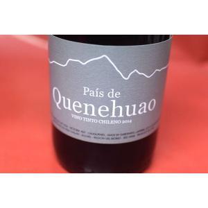 赤ワイン アグリコーラ・リュイット・リミタダ / バイス・デ・キネウアオ [2014] wineholic