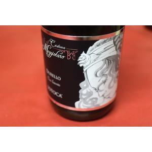 シャンパン スパークリングワイン クリスティアーナ・メッジョラーロ / ヴェネト ドゥレッロ・スイ・リエーヴィティ・ソトカ [2013]|wineholic