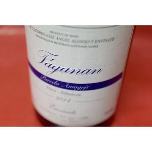 白ワイン エンビナーテ / タガナン・パルセラ・アモゴヘ [2014]|wineholic