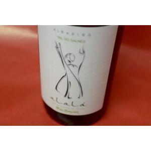 白ワイン ナルパ・ビノ / スアララ [2013]|wineholic