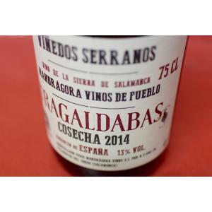 赤ワイン マンドラゴラ・ビノス / トラガルダバス [2014]|wineholic