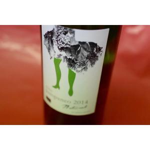 白ワイン エセンシア・ルラル / パンパネオ・アイレン・ナチュラル [2014]|wineholic