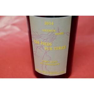 赤ワイン ドメーヌ・モレル / コート・デュ・ジュラ ピノ・ノワール レ・トゥルイヨ [2014]|wineholic