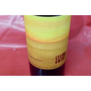 赤ワイン セップ・ムスター / ツヴァイゲルト [2012]|wineholic