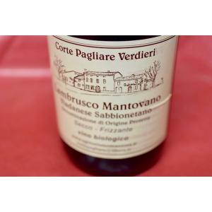 シャンパン(泡物) ヴェルディエリ / ランブルスコ マントヴァーノ [2015]|wineholic