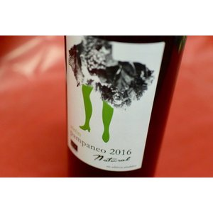 白ワイン エセンシア・ルラル / パンパネオ・アイレン・ナチュラル 2016|wineholic