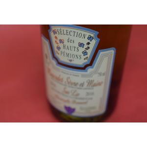白ワイン ドメーヌ・デ・オー・ペミオン / セレクション・デ・ムスカデ・ド・セーヴル・エ・メーヌ [2016]|wineholic