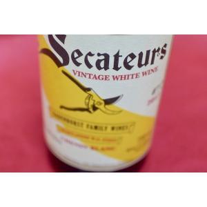 白ワイン A.A.バーデンホースト / セカトゥール・シュナン・ブラン [2017]|wineholic