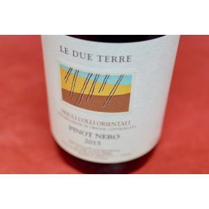 赤ワイン レ・デュエ・テッレ / ピノ・ネロ [2015] wineholic