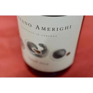 赤ワイン ステファノ・アメリーギ / シラー・コルトーナ [2013] wineholic