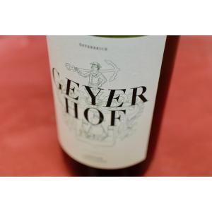 白ワイン ガイヤーホフ / グリューナー?ヴェルトリーナー ラントヴァイン 1000ml  [2017]|wineholic