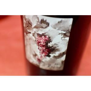 赤ワイン ドメーヌ・グラムノン / ポワニェ・ド・レザン [2017]|wineholic